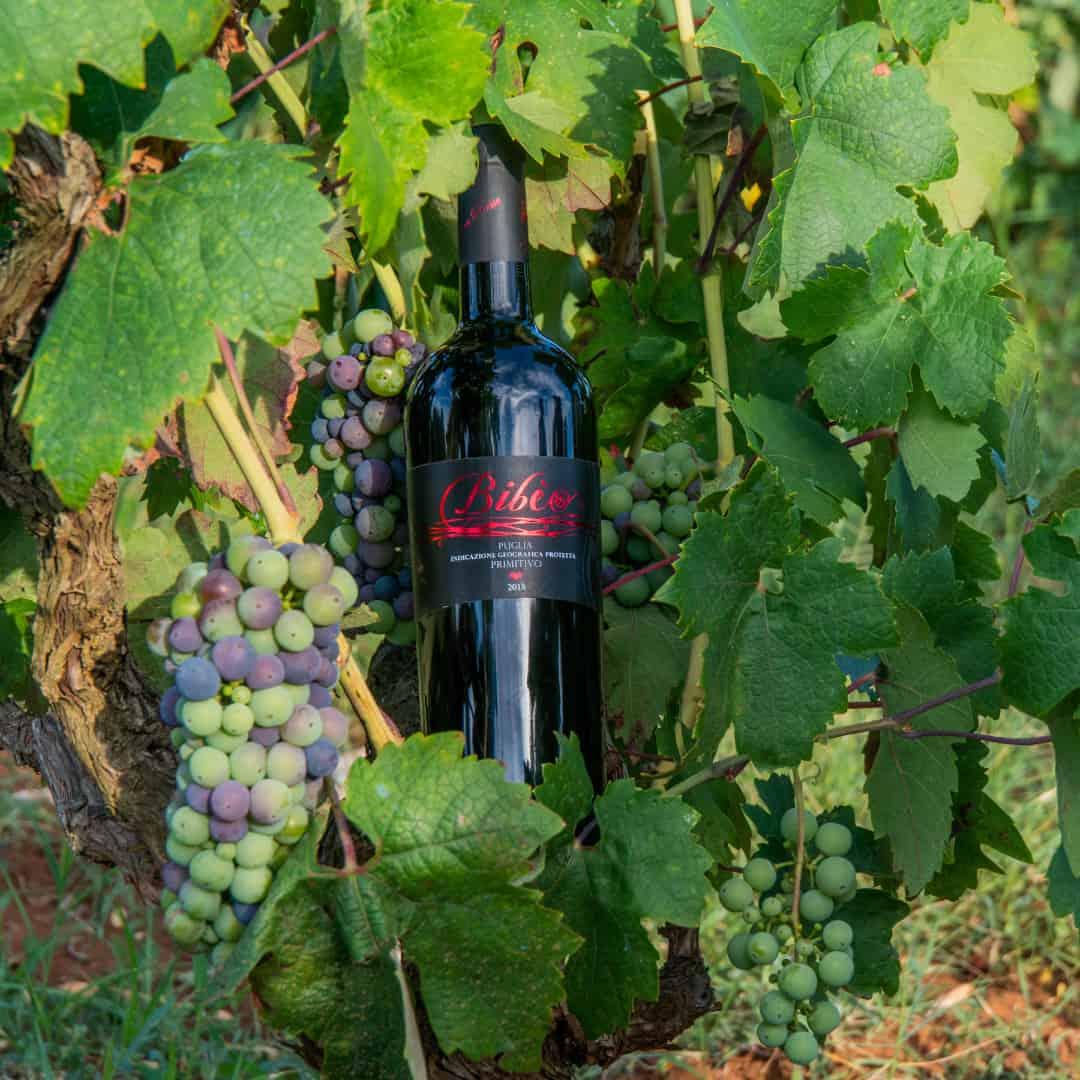 vino-pugliese-produzione-locale